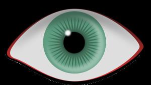 eye-309608_640