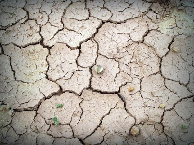soil-1551337_640